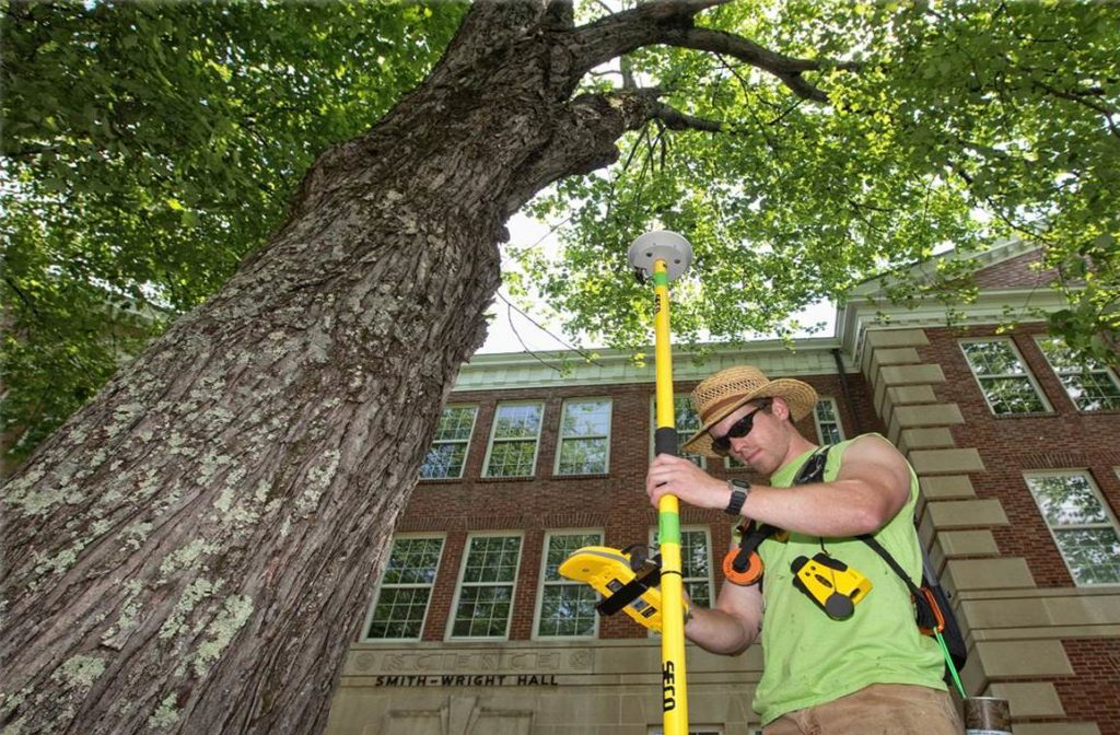 Arborist Consultations-West Little River FL Tree Trimming and Stump Grinding Services-We Offer Tree Trimming Services, Tree Removal, Tree Pruning, Tree Cutting, Residential and Commercial Tree Trimming Services, Storm Damage, Emergency Tree Removal, Land Clearing, Tree Companies, Tree Care Service, Stump Grinding, and we're the Best Tree Trimming Company Near You Guaranteed!