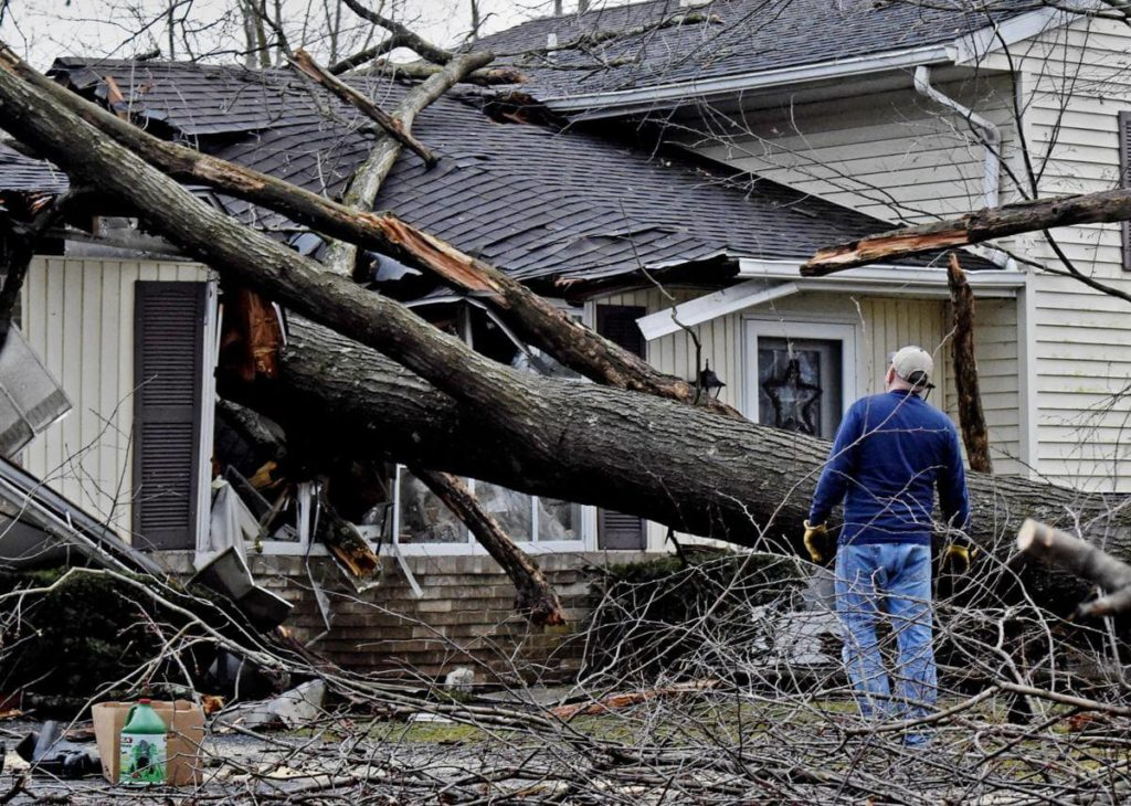 Storm Damage-West Little River FL Tree Trimming and Stump Grinding Services-We Offer Tree Trimming Services, Tree Removal, Tree Pruning, Tree Cutting, Residential and Commercial Tree Trimming Services, Storm Damage, Emergency Tree Removal, Land Clearing, Tree Companies, Tree Care Service, Stump Grinding, and we're the Best Tree Trimming Company Near You Guaranteed!